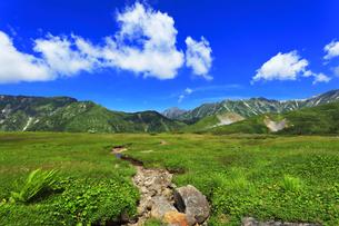 夏の立山 天狗平より剣岳などの山々の写真素材 [FYI04606286]