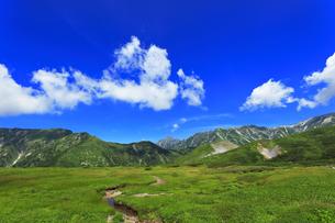 夏の立山 天狗平より剣岳などの山々の写真素材 [FYI04606287]