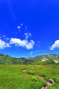 夏の立山 天狗平より剣岳などの山々の写真素材 [FYI04606288]
