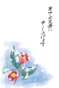 雪と椿の寒中お見舞いのイラスト素材 [FYI04606298]