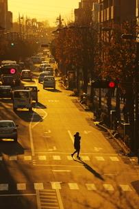 西日に照らされた道の写真素材 [FYI04606308]