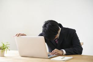 パソコンでのオンライン面接で頭を下げる男子の就活生の写真素材 [FYI04606339]