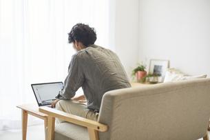 ソファでパソコンを操作する男性の後ろ姿の写真素材 [FYI04606452]