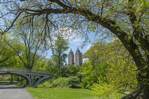 セントラルパーク新緑の木々の後ろに見えるセントラルパークウエストに建つザ エルドラドの写真素材 [FYI04606908]