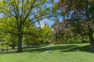 セントラルパーク生い茂る新緑と芝生の後ろに見えるセントラルパークウエストの高級住宅街とザ エルドラドの写真素材 [FYI04606914]