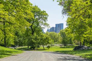 セントラルパーク生い茂る新緑の間を走る道と後ろに見えるミッドタウンマンハッタンの摩天楼の写真素材 [FYI04606917]