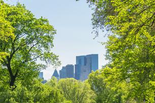 セントラルパーク生い茂る新緑の後ろに見えるミッドタウンマンハッタンの摩天楼の写真素材 [FYI04606918]