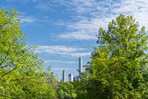 セントラルパーク生い茂る新緑の後ろに見えるミッドタウンマンハッタンの摩天楼の写真素材 [FYI04606924]