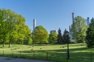 新緑が生い茂るセントラルパークの夕暮れの芝生広場で寛ぐ人々とミッドタウンマンハッタン摩天楼の写真素材 [FYI04606936]