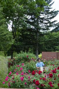 ガーデンでタブレットPCを持つ男性の写真素材 [FYI04607189]