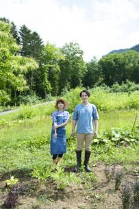田舎暮らしするカップルの写真素材 [FYI04607233]