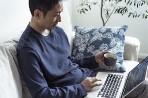 コーヒーカップを持ってノートパソコンを見る日本人男性の写真素材 [FYI04607273]