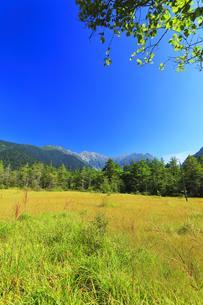 夏の上高地 田代湿原と穂高連峰の写真素材 [FYI04607333]