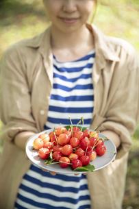 サクランボを持つ若い女性の手元の写真素材 [FYI04607504]
