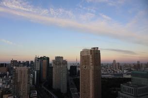 夕暮れ時の港区の高層ビル群の間から見えるスカイツリーの写真素材 [FYI04607571]
