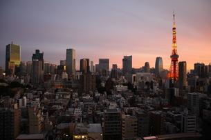 夕暮れ時の東京タワーと港区の高層ビル群の写真素材 [FYI04607648]