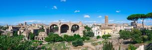 パラティーノの丘からフォロロマーノを一望(マクセンティウスのバシリカ サンタ・フランチェスカ・ロマーナ聖堂 ロムルスの神殿)の写真素材 [FYI04608497]