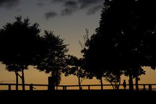 夕暮れの公園の写真素材 [FYI04608540]