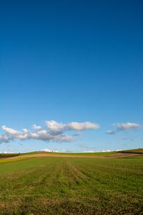 緑の畑作地帯と青空の写真素材 [FYI04608551]