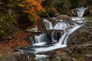 おしどり隠しの滝の写真素材 [FYI04608625]