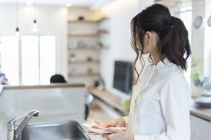 台所で家事をする女性の写真素材 [FYI04608977]