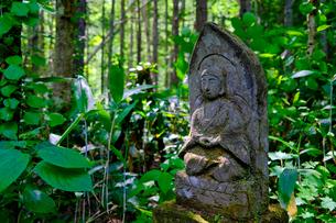森の石像の写真素材 [FYI04609437]
