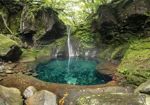 おしらじの滝の写真素材 [FYI04609691]