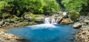 栃木県 スッカン沢の流れの写真素材 [FYI04609705]