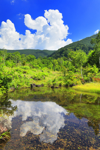 乗鞍高原 偲ぶの池と夏の空の写真素材 [FYI04609828]