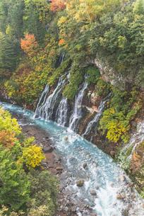 秋色の白髭の滝の写真素材 [FYI04609909]