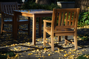 庭のテーブルと椅子の写真素材 [FYI04610096]