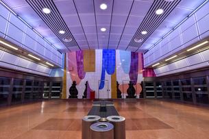 スウェーデン ペンデルトーグのストックホルムシティ駅のアートの写真素材 [FYI04610156]