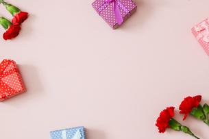 ピンク背景のカーネーションとギフトボックスの写真素材 [FYI04610448]