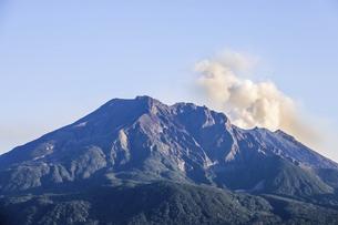 煙を見る桜島の写真素材 [FYI04610482]