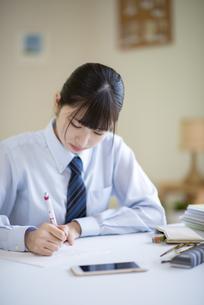 家庭学習をする女子学生の写真素材 [FYI04610789]