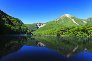 夏の上高地 大正池に焼岳の写真素材 [FYI04611086]