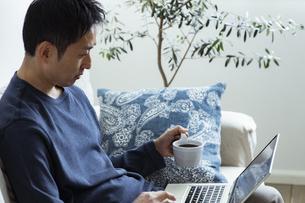 コーヒーカップを持ってノートパソコンを見る日本人男性の写真素材 [FYI04612014]