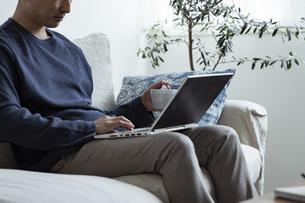 コーヒーカップを持ってノートパソコンを見る男性の写真素材 [FYI04612016]