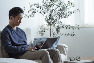 ノートパソコンを見る日本人男性の写真素材 [FYI04612018]