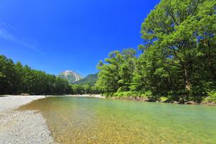 夏の上高地 梓川の清流と焼岳の写真素材 [FYI04612310]