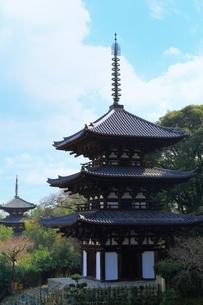 当麻寺 西塔と東塔 の写真素材 [FYI04612736]