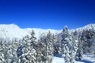 西穂高口より望む雪景色の北アルプスの写真素材 [FYI04612759]