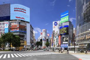 渋谷スクランブル交差点の写真素材 [FYI04612960]