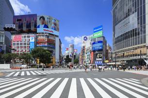 渋谷スクランブル交差点の写真素材 [FYI04612963]