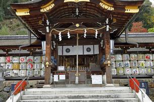 11月 酒の神 松尾大社の拝殿の写真素材 [FYI04613154]