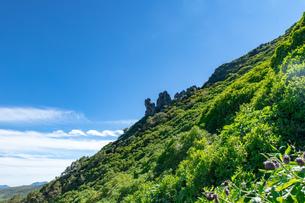 北海道 黒岳山頂周辺の夏の風景の写真素材 [FYI04613481]