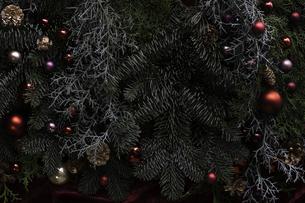 クリスマスオーナメントとモミの木とコニファーの写真素材 [FYI04613628]