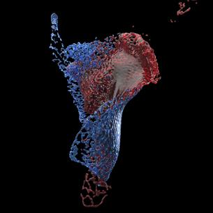 交わる赤と青の水のイラスト素材 [FYI04614182]