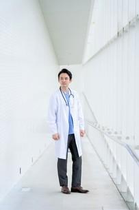日本人男性医師の写真素材 [FYI04614547]