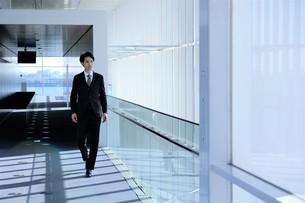 日本人ビジネスマンの写真素材 [FYI04619201]
